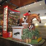 Spruce Meadows Display