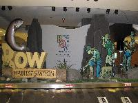 Bow Habitat Display